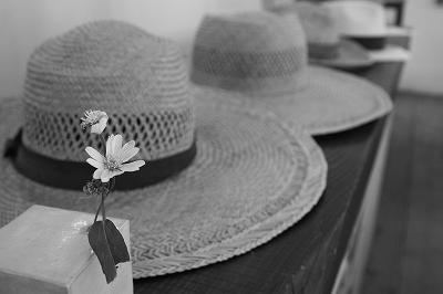 帽子大.jpg